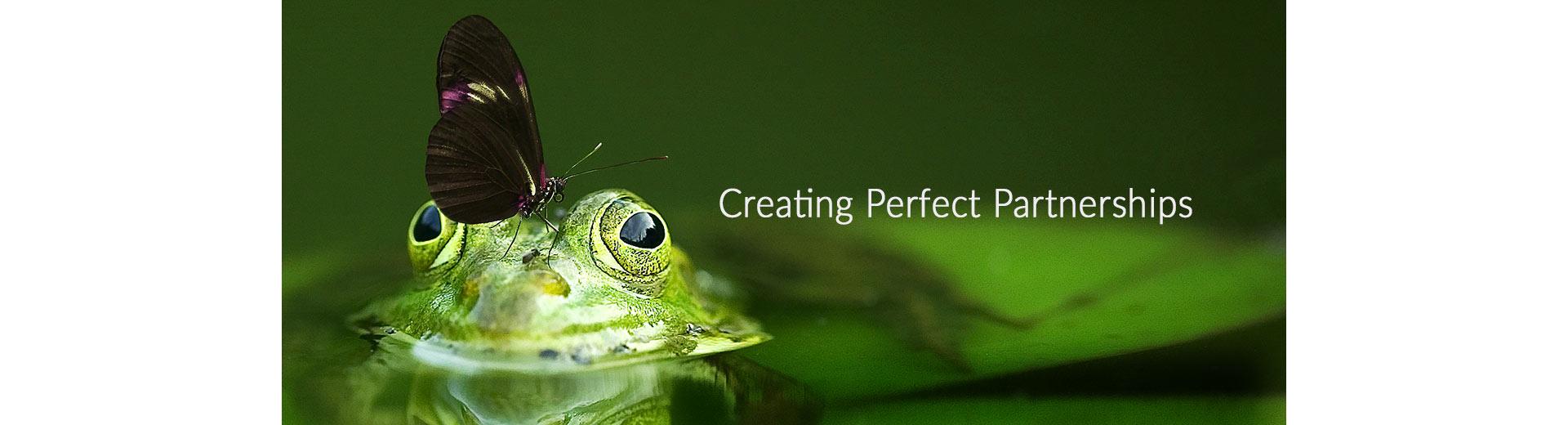 Web design Kidderminster Sammy Southall Webworks